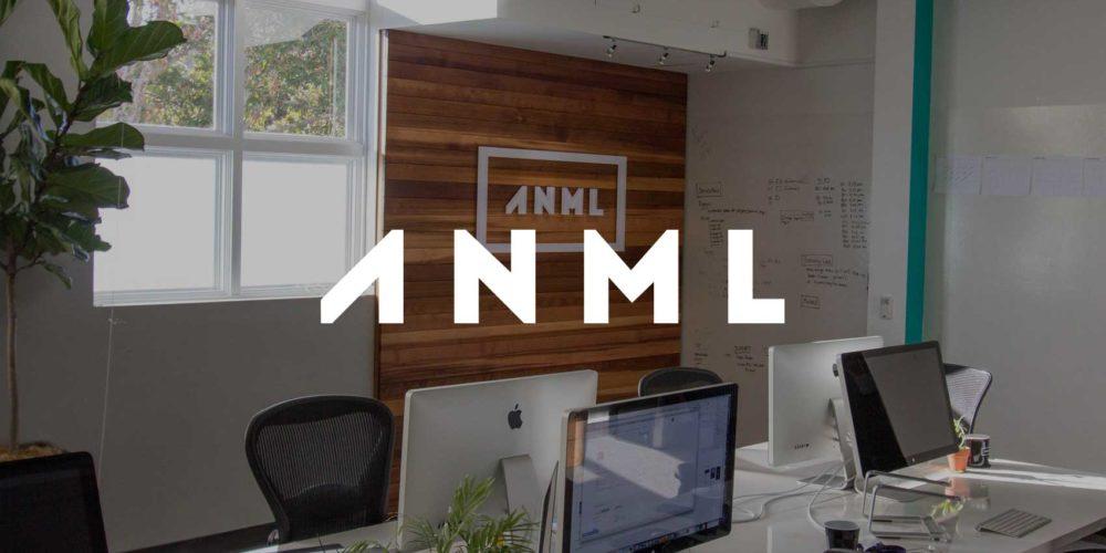 ANML Digital Agency located in Los Gatos